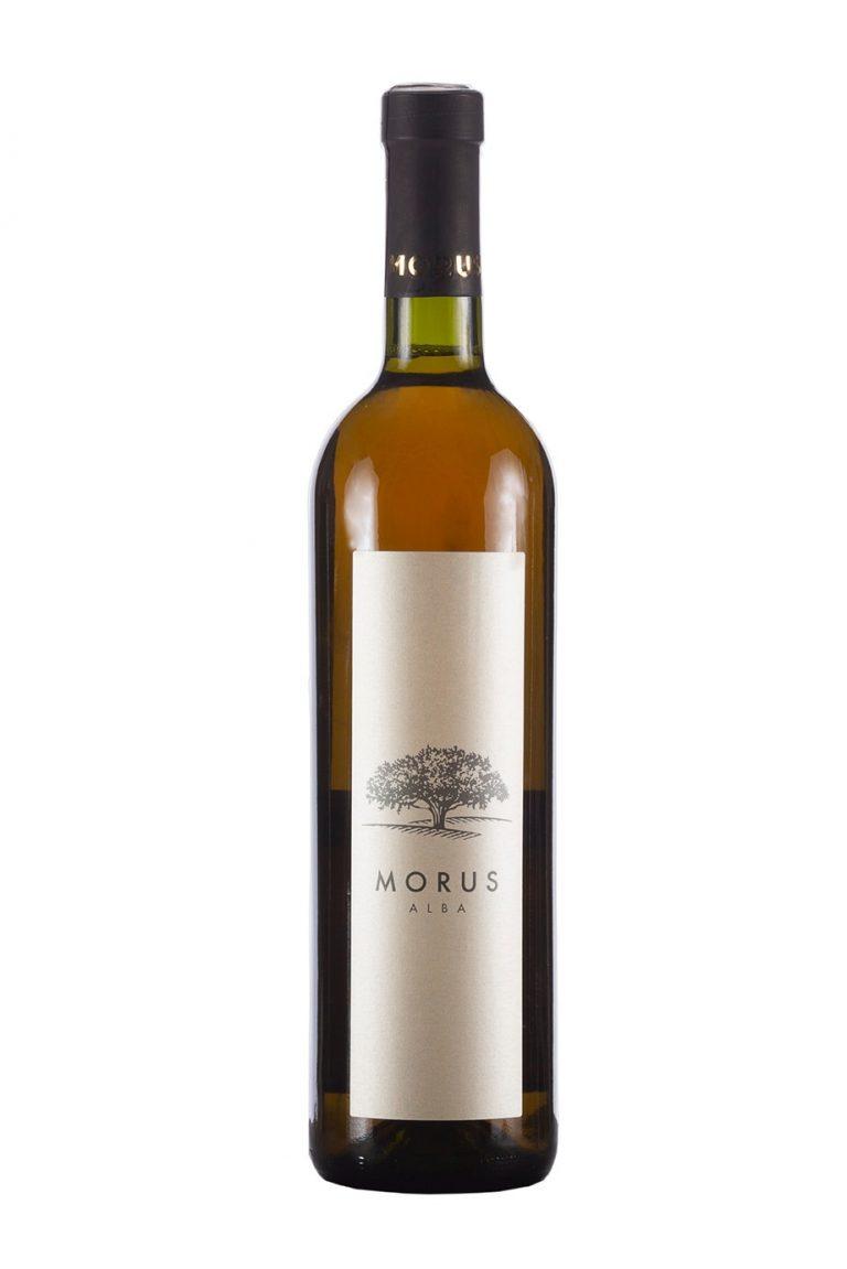 מורוס-אלבה-768x1151